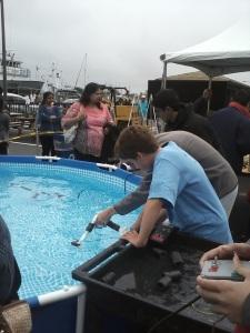 Tank-testing the ROV
